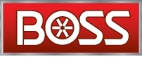 Boss Snowplow coupon code